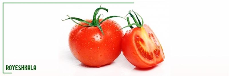كشت گوجه فرنگی در گلخانه
